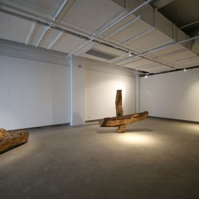 31-liang-hao-array-wood-2014-16-logs-arranging-the-work-depending-on-the-site-bout-5m-width-and-8m-depth