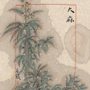 zhang-yanzi-ecstasy-no-1-mariguana-2016-ink-on-paper-20x30cm-2-pieces-01