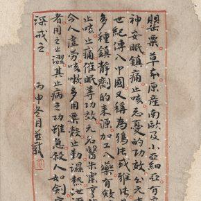 zhang-yanzi-ecstasy-no-2-poppy-2016-ink-on-paper-20x30cm-2-pieces-02