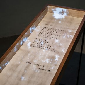 Chih Hung LIU Three Indexes Series Sonnet 2014 2016 mosquitoes lacquer beeswax wooden frame 30x60x80cm 290x290 - Taipei Fine Arts Museum presents the Exhibition of 2016 Taipei Arts Awards