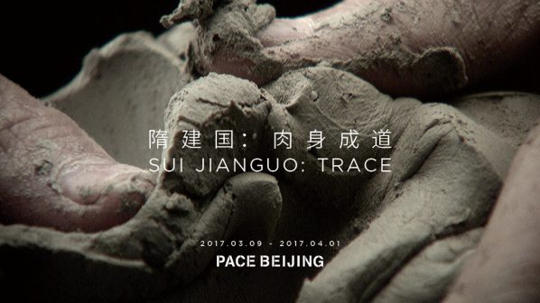 Poster of Sui Jianguo Trace