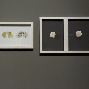 "23 Exhibition view of ""Plumtree Scent Contemporary Jewelry by Teng Fei"""