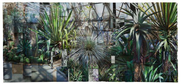 Ji Zhou, Greenhouse 2, Arcival pigment print, 110x250cm, 2017