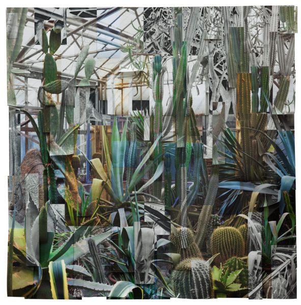 Ji Zhou, Greenhouse 3, Archival, pigment, print, 120x120cm, 2017