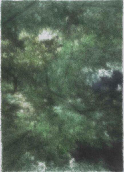 Kang Haitao, Trees, 2015-2016; Acrylic on paperboard, 252x182cm