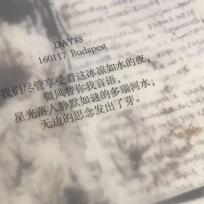 07 The excerpts from the original diary on the delicate tracing paper. 290x290 - Zhang Yizhi: Design Arises and Blossoms in Cold Ashes