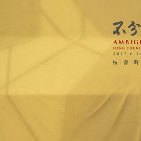 Poster of Ambiguity