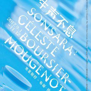 """Shanghai Minsheng Art Museum announces """"SONSARA: Céleste Boursier-Mougenot"""""""