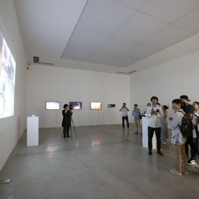 """08 Curator Wang Lin onsite interpreted artist Luo Qiang's work 290x290 - """"What Makes Our Lives So Different"""": Ivy Art 2017 Young Curator Special Project Opens in Beijing"""