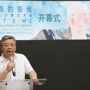 """04 Ding Shuangping Member of Party Committee of Hunan Publishing Investment Holding Group and General Manager of Zhongnan Publishing House Media Group 290x290 - To Be a Real Hero of Life: Wang Shaojun's Solo Exhibition """"It's Me"""" in Changsha"""