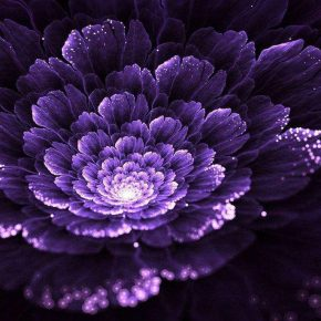 """07 Fractal art shows the mathematical beauty image is from the network 290x290 - Yan Jia'an: """"Probability Exposes the Mystery, Statistics Explain the Secret"""""""