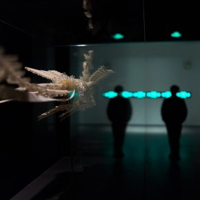 "34 Xu Bings Model of Phoenix at the United Art Museum Wuhan 290x290 - ""Xu Bing"": The Art View and Action Logic of a Fatalist"
