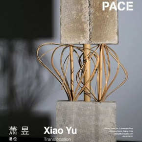 "Pace Gallery announces ""Xiao Yu: Translocation"" opening March 16 in Beijing"