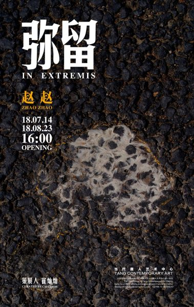 """Poster of """"In Extremis"""" 379x598 - Tang Contemporary Art presents Zhao Zhao's """"In Extremis"""" in Beijing"""