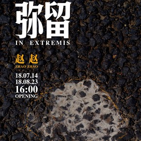 """Tang Contemporary Art presents Zhao Zhao's """"In Extremis"""" in Beijing"""
