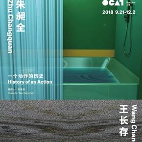 OCAT Shanghai presents duo solo exhibition featuring works by Wang Changcun and Zhu Changquan