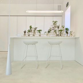 "11 Vision × Yang Mingjie Green House 290x290 - Exploration of ""House"": Taking Home as a Mirror, How to Reshape the Relationship between Humankind and House?"
