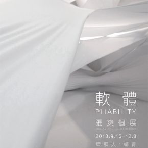 "Poster of Pliability 290x290 - Wanying Art Museum presents ""PLIABILITY: Stella Zhang Solo Exhibition"""