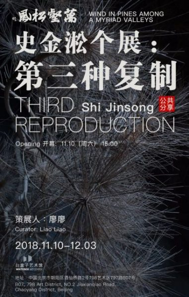 "Poster of Shi Jinsong Third Reproduction 381x598 - Whitebox Art Center presents Shi Jinsong's solo exhibition ""Wind in Pines Among a Myriad Valleys – the Third Reproduction"" in Beijing"