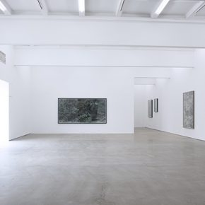 "Exhibition View of ""A Walk in the Woods"""