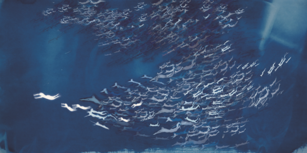 "Han Qin The Age of Migration 1 2018. Cyanotype watercolor inkjet print on silk 28 x 56 inch ©Han Qin courtesy Fou Gallery 598x299 - Fou Gallery announces Han Qin's solo exhibition ""Ethereal Evolution"" to be presented in New York"