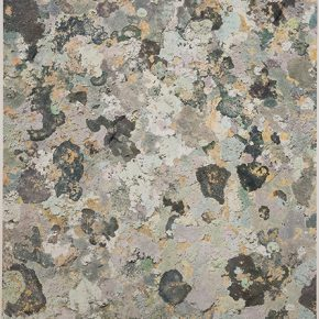 Shi Guowei, Lichens, 2018; Painting on photograph, 164x135.5cm