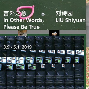 "White Space Beijing presents ""Liu Shiyuan: In Other Words, Please Be True"""
