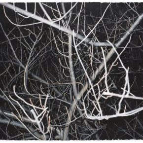 Gong Jian, Look at this grey tree No. 12, 2016; Acrylic on canvas, 170x230cm