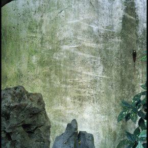 Hélène Binet,Lingering Garden, Suzhou Gardens, China,2018,digital C-Type print. Courtesy of the artist & Ammann Gallery.