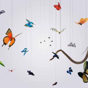 Hong Lei, Speak, Memory of Butterflies, 2005; Color Photograph